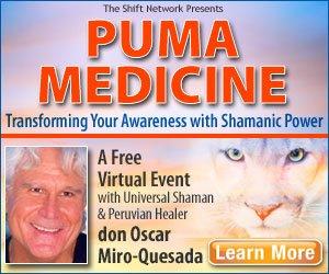 Puma Medicine - Transforming Your Awareness With Shamanic Power