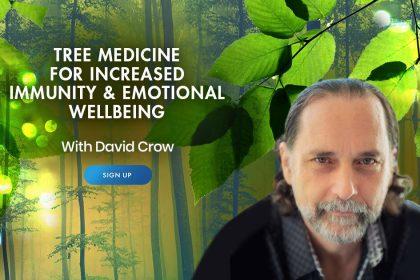Tree Medicine for Increased Immunity & Emotional Wellness - With David Crow