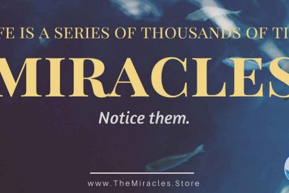 LIfe is A Series of Tiny Miracles - Notice Them