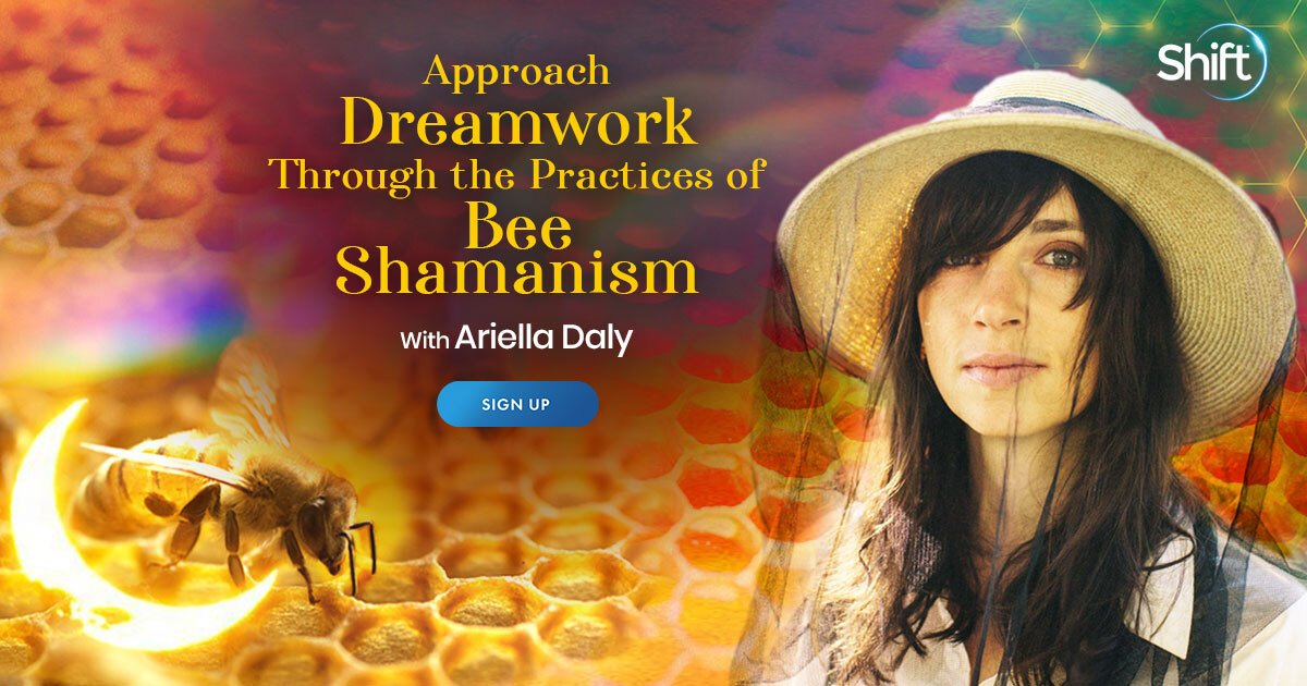 Deeper Dreamwork Using Bee Shamanism: For Healing & Spiritual Growth - With Ariella Daly