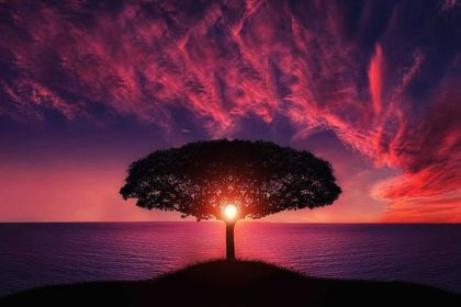 The Tree Of Life - A Christian Spiritual Story