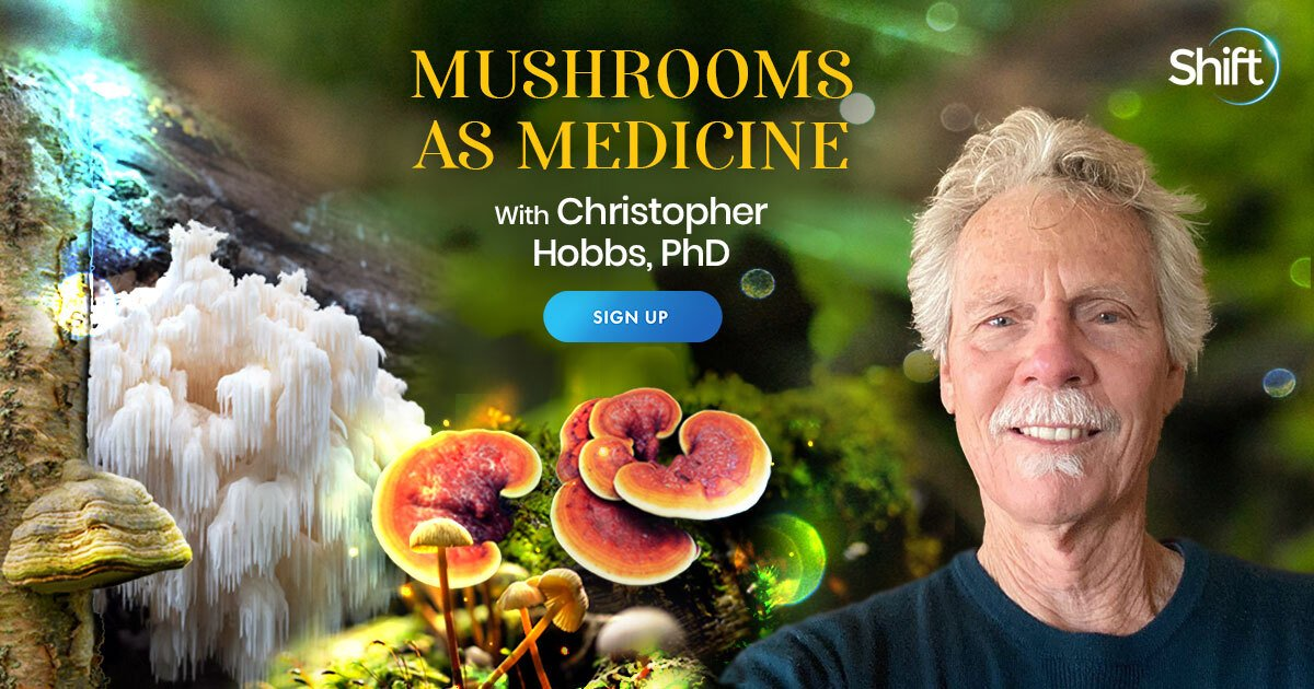 Mushrooms as Medicine: Nutritional & Medicinal Support for Mind, Body, and Spirit - With Christopher Hobbs