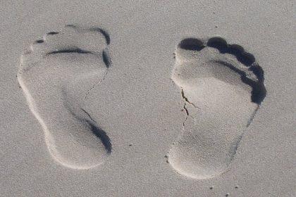 Buddha's Footprints - A Zen Buddhist Spiritual Story by Osho