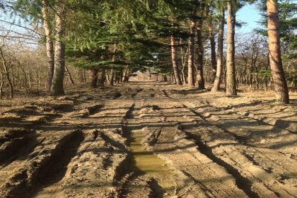 Muddy Road - A Zen Buddhist Spiritual Story About Letting Go