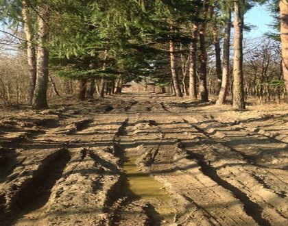 Muddy Road – A Zen Buddhist Spiritual Story About Letting Go