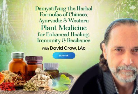 Enhanced Healing Using Herbal Formulas of Chinese, Ayurvedic & Western Plant Medicine - With David Crow